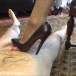 Watch Porno Hub Online – Fetish Lady Imperatriza presents Dominant Cock Games With My 6 Inch Italian Mori Luxury Court Shoes (MP4, FullHD, 1920×1080)